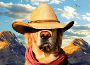 Avanti Press Dog With Straw Hat Funny / Humorous Father's Day Card