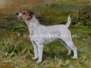 SALE Parson Russell Terrier Signed Dog Print by Susan Harper Unmounted