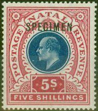 Natal 1902 5s Dull Blue & Rose Specimen SG140s V.F Lightly Mtd Mint