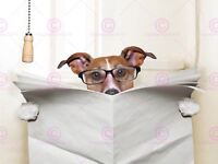Photograph Composition Jack Russell Newspaper Toilet Funny Canvas Art Print