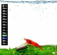 "SunGrow Shrimp Stick-on Thermometer 5.2"": Optimal Water Tank Temperature Monitor"