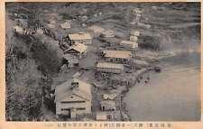 Japan Small Village Birds Eye View Antique Postcard J66628