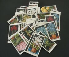 Vintage Lot of 102 Flower Culture in Pots Imperial Tobacco Co Canada CARDS