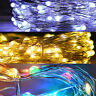 50/100/200 Micro Rice Wire LED String Fairy Lights Party Xmas Christmas Battery
