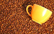 2.5 lb Peru Approcassi Cajamarca Fair Trade Organic Shade Grown Light Coffee Bns
