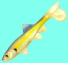 Berkley HAVOC 3-inch Chartreuse Shad Sick Fish Fishing Lures - (HVMSF3-CS)