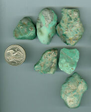 103 Gram Stabilized American Turquoise Rough Fox mines