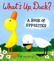 What's Up, Duck?: A Book of Opposites: By Hills, Tad