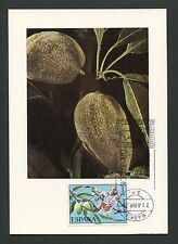 SPANIEN MK 1975 FLORA FRÜCHTE FRUITS MAXIMUMKARTE CARTE MAXIMUM CARD MC CM d3754