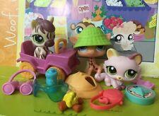 Littlest Pet Shop #1488#1489#1490 Search 'n Safari Pink Cat Accessories
