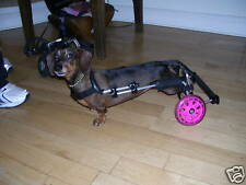 Wheels for Dogs, Dog Wheelchair  UK made.