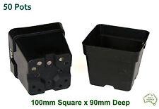 100mm Square Squat Black Plastic Pot x50