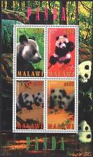 MALAWI  Mint S/S Fauna Bears Panda 2010     avdpz