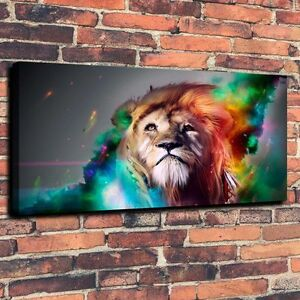 CHPT35 100% hand painted Colorful-Lion Meteor Oil Painting home Decor Canvas