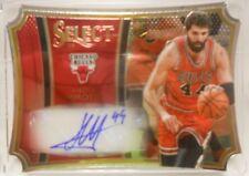 2014-15 Panini Select Nikola Mirotic SP Die Cut Autograph Rookie Card #/ 99