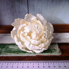 10 Peony Rose Sola Wood Diffuser Flowers 8 cm Dia. with cotton rope