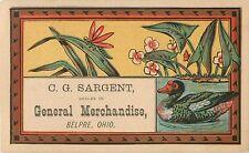C.G. Sargent, General Merchandise, Belpre OH, Victorian Tradecard 1880's