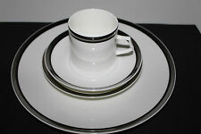 MIKASA SOLITUDE  DISCONTINUED 4 PIECE PLACE SETTING BEAUTIFUL