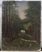 Waldinneres Ölgemälde Natur Nadelwald beschädigt A.W. Monogramm 32 x 25 cm