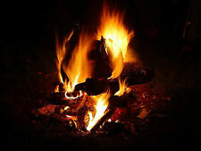 Relaxing Natural Sounds - Log Cabin Fire  - Audio Cd