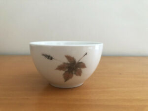 VINTAGE ROYAL DOULTON TUMBLING LEAVES TC1004 OPEN SUGAR BOWL MADE IN ENGLAND