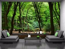 Forest in the Netherlands  Photo Wallpaper Wall Mural DECOR Paper Poster Wall