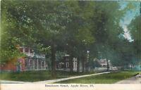 Apple River Illinois~Residential Street~Big Shade Trees c1910 Postcard