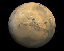 PLANET MARS PHOTOGRAPHED FROM NASA VIKING 1 11x14 PHOTO