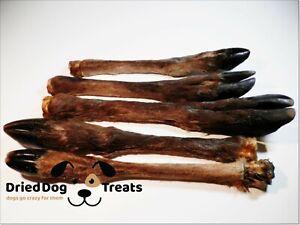 3x Huge Furry Dried DEER Leg Hoove Grade A - chews treats snacks 100% NATURAL