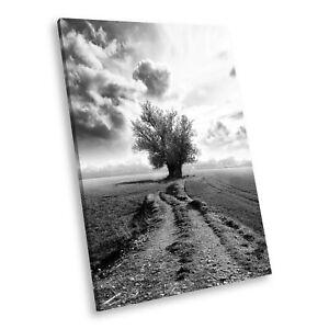 SC358 Black White Portrait Canvas Picture Print Large Wall Art Tree Nature