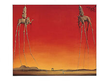 LES ELEPHANTS ART PRINT BY SALVADOR DALI elephant on stilts red fantasy poster