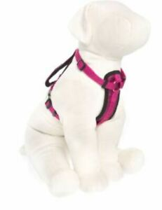 KONG Comfort Padded Harness For Dogs Small Pink Girth 16-22 in
