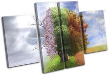 Four Seasons Tree Surrealism Fantasy MULTI TOILE murale ART Photo Print