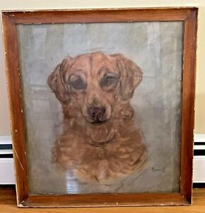 Original H R Hildebrand Pastel Painting Drawing Mixed Breed Dog 1953 On Board