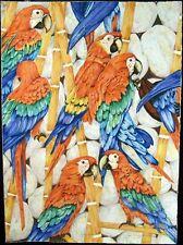 "Joyce Kasprzyk ""Parrot dise"" Original ART Serigraph of birds SUBMIT BEST OFFER"
