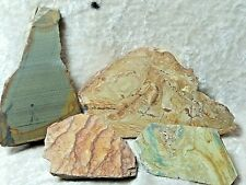 Picture Jasper slabs or cut pieces  Lot of 4 7.9 oz.