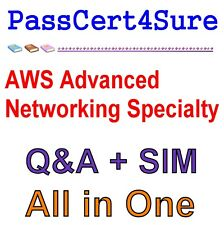 AWS Advanced Networking Specialty Exam Q&A+SIM