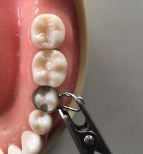 U Dental Matrix Bands / retainers PREMOLARS  for composit and amalgam / Matrices