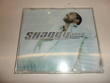 CD Shaggy traete Rayvon – Angel