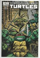 Teenage Mutant Ninja Turtles 4 B Kevin Eastman Variant IDW 1st TMNT NM