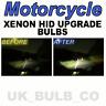 Xenon headlight bulbs Honda CBR 1000RR FIREBLADE H7 501