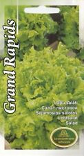Vegetable Seeds Spring Lettuce Grand Rapids EU Standard Pictorial Packet UK