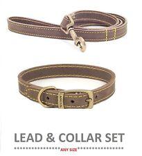 Ancol Timberwolf Leather Collar 45cm - Blue