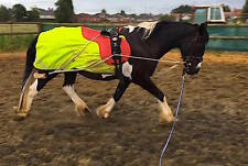 NEW Horse Lunging Training Aid Pessoa based white one size FITS ALL ON SALE