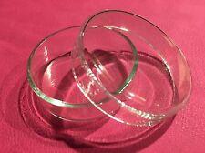 Petrischalen aus gehärtetem Glas / 50mm x 16mm