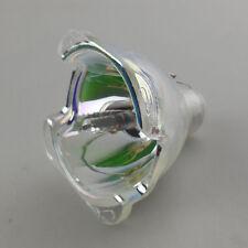 Lamp Bulb 59.J8401.CG1 w/Phoenix Original Burner Fit Projector BENQ PE7100