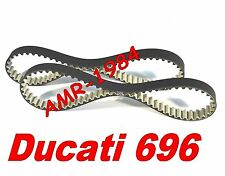 CINGHIE DISTRIBUZIONE DUCATI Monster 696 da 2008  HIGH TENACITY