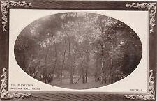 The Plantation, Bottoms Hill Wood, MOTTRAM, Cheshire RP