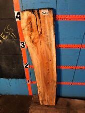 "#9642   2"" THICK  black line spalted maple live edge slab  mantel"