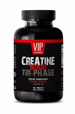 Muscle lean weight gainer - CREATINE TRI-PHASE 5000mg 1B - creatine with scoop
